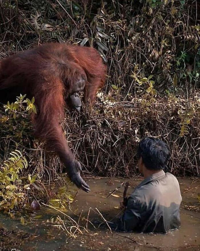 1. Need a hand, buddy?
