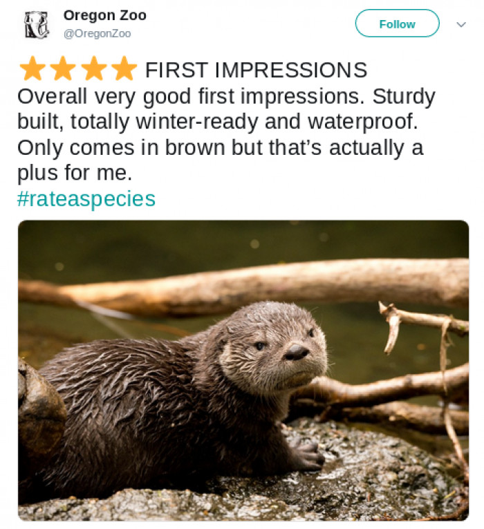 1. Oregon Zoo and Otters