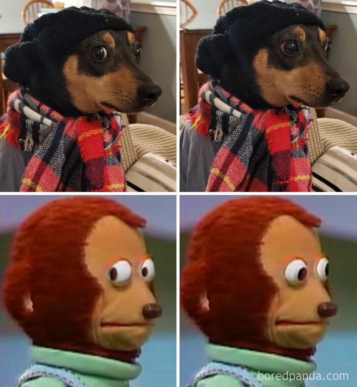 26. Meme-Tastic, this #LookAlikeChallenge is from the Look Away Monkey Puppet Meme!