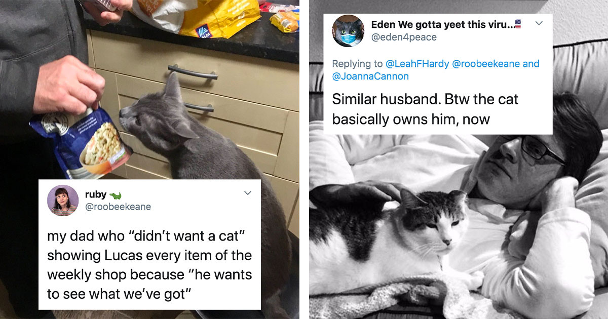 18 People Who Swore They Never Wanted A Pet But Now Spoil Them Beyond Belief