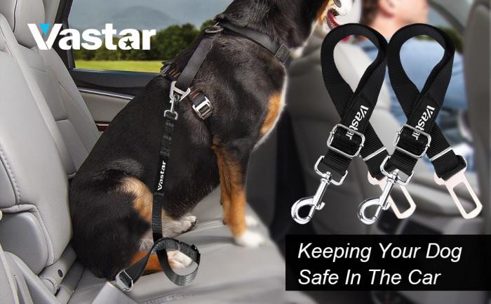 16. Adjustable Dog Safety Belt