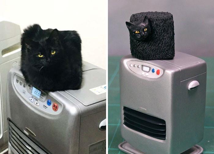#32 Square Cat