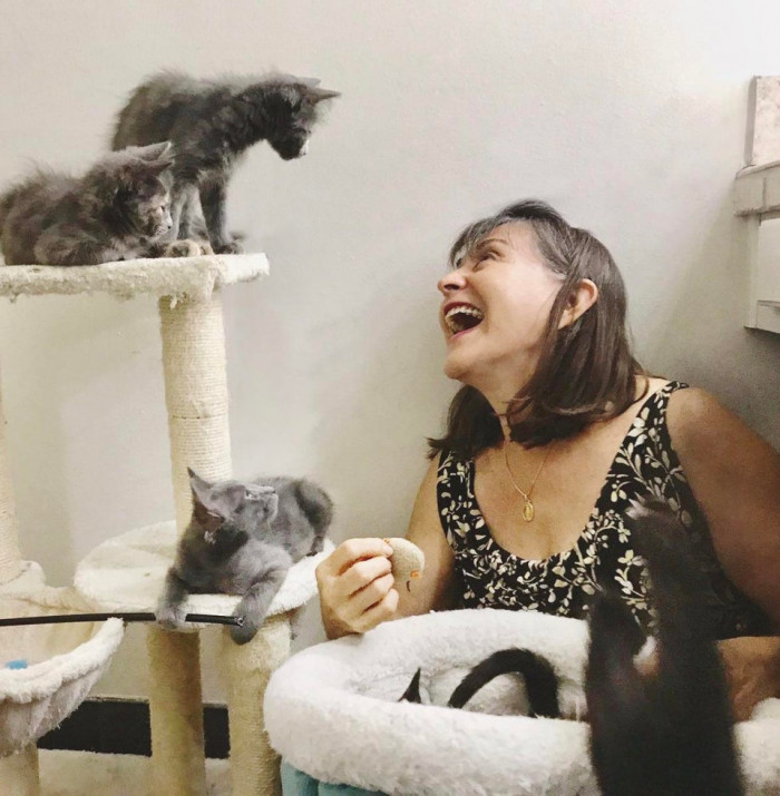 This person's mother enjoying her foster kittens