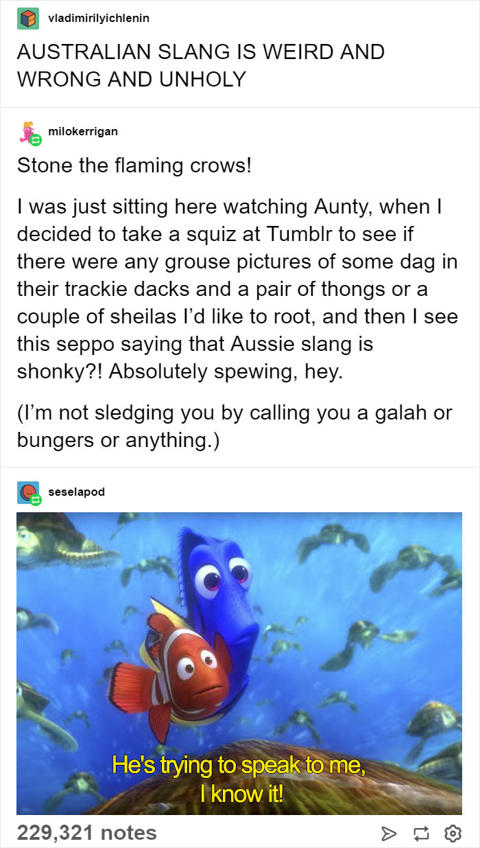 What are you on about? Aussie slang is normal mate.