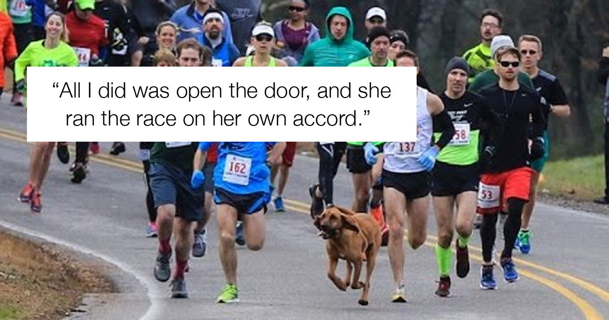 """Dog Let Out To """"Do Her Business"""" Joins a Half Marathon and Finishes 7th"""