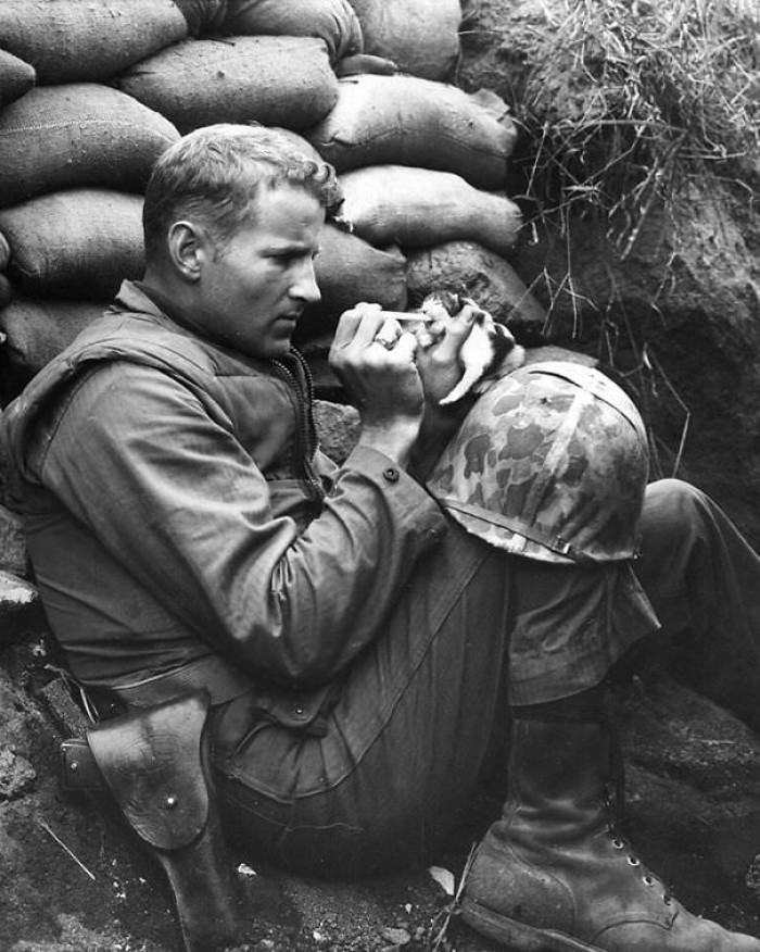 4. Soldier bottle feeding a kitten
