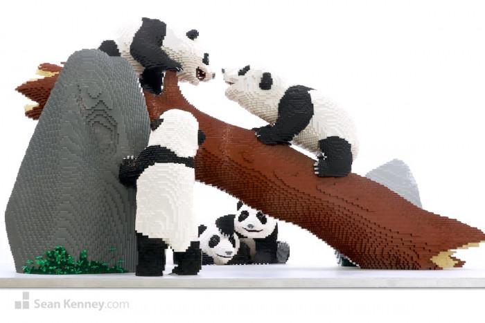 10. Baby Pandas Playing