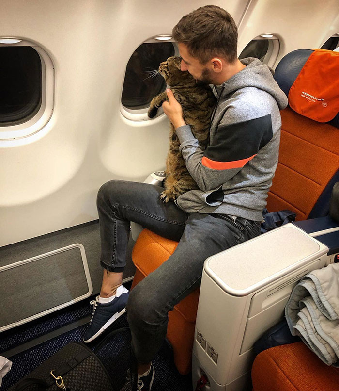 Airport surveillance footage confirmed that Galin broke airline rules with his cat-swapping charade.