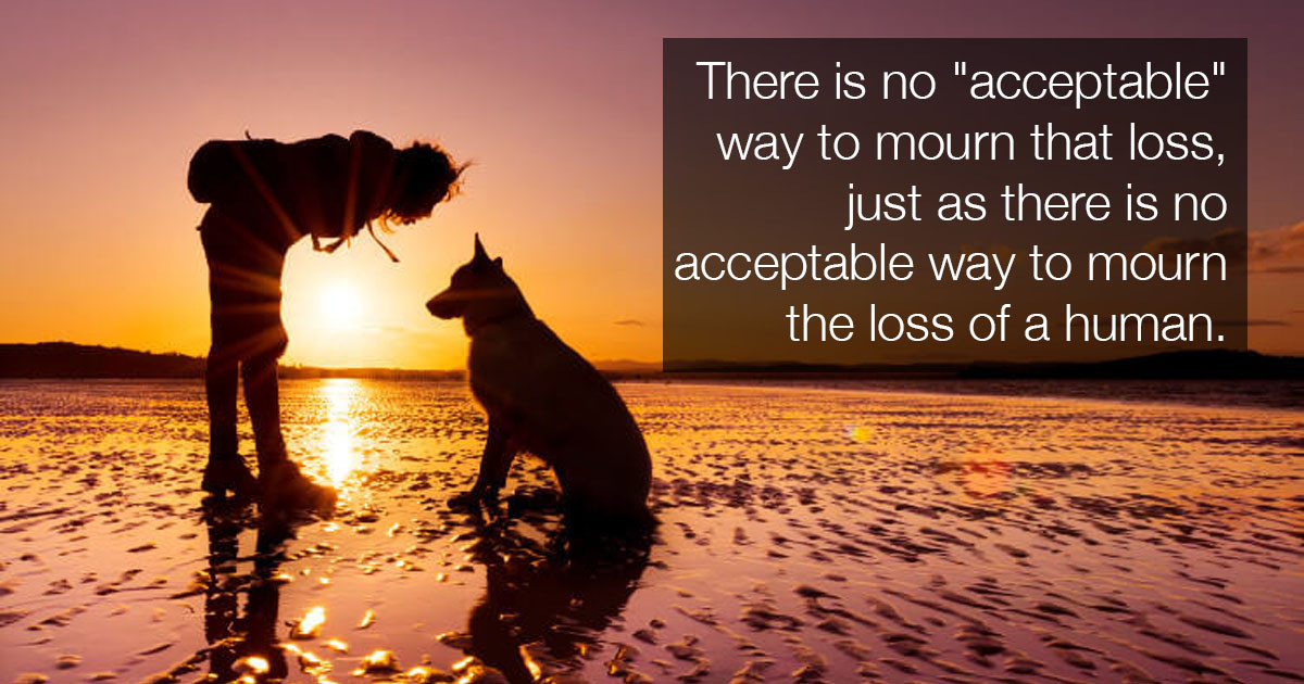 Study Shows That Losing A Dog Can Be As Difficult As Losing A Family Member