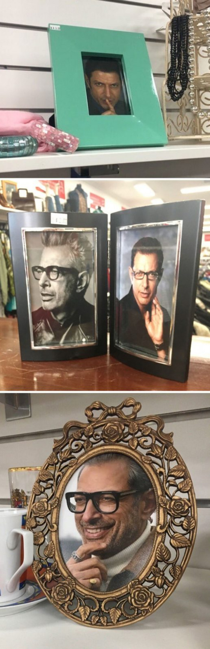This coworker included a photo of Jeff Goldblum in every frame for sale