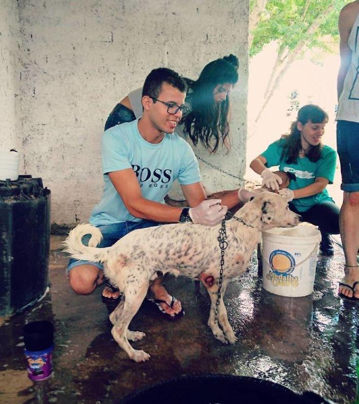 Amarildo Silva is passionate about helping animals.
