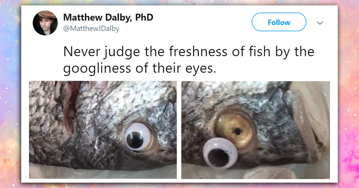 This Store Was Busted Putting Googly Eyes On Fish To Give Them A Fresh Appeal