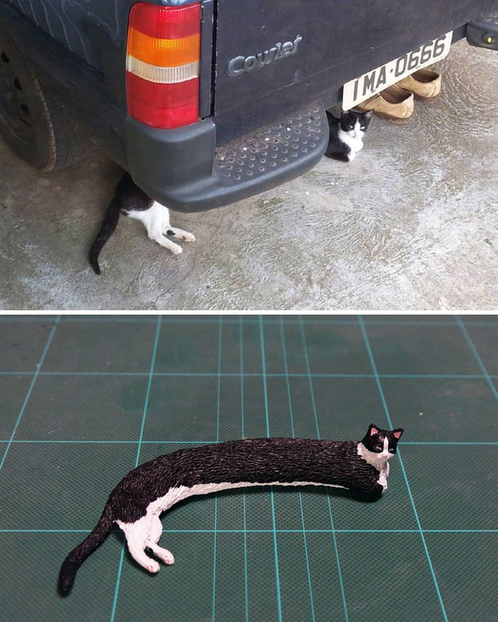 5. Well, this is one long cat.