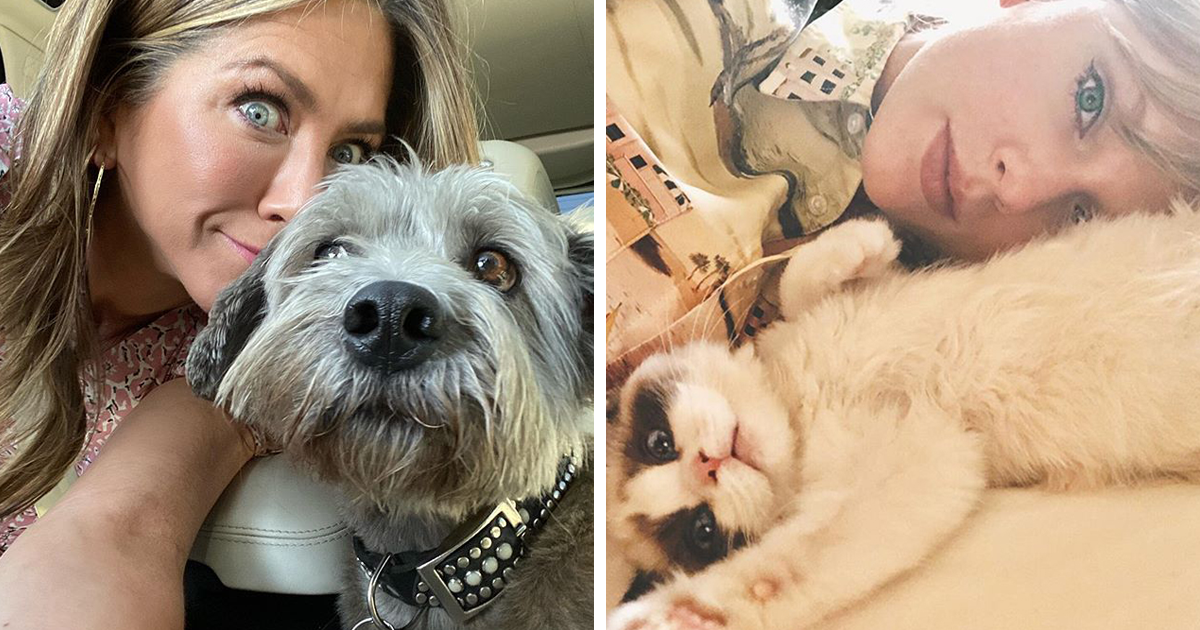 25 Celebrities Who Adopt And Rescue Pets Instead Of Buying Them