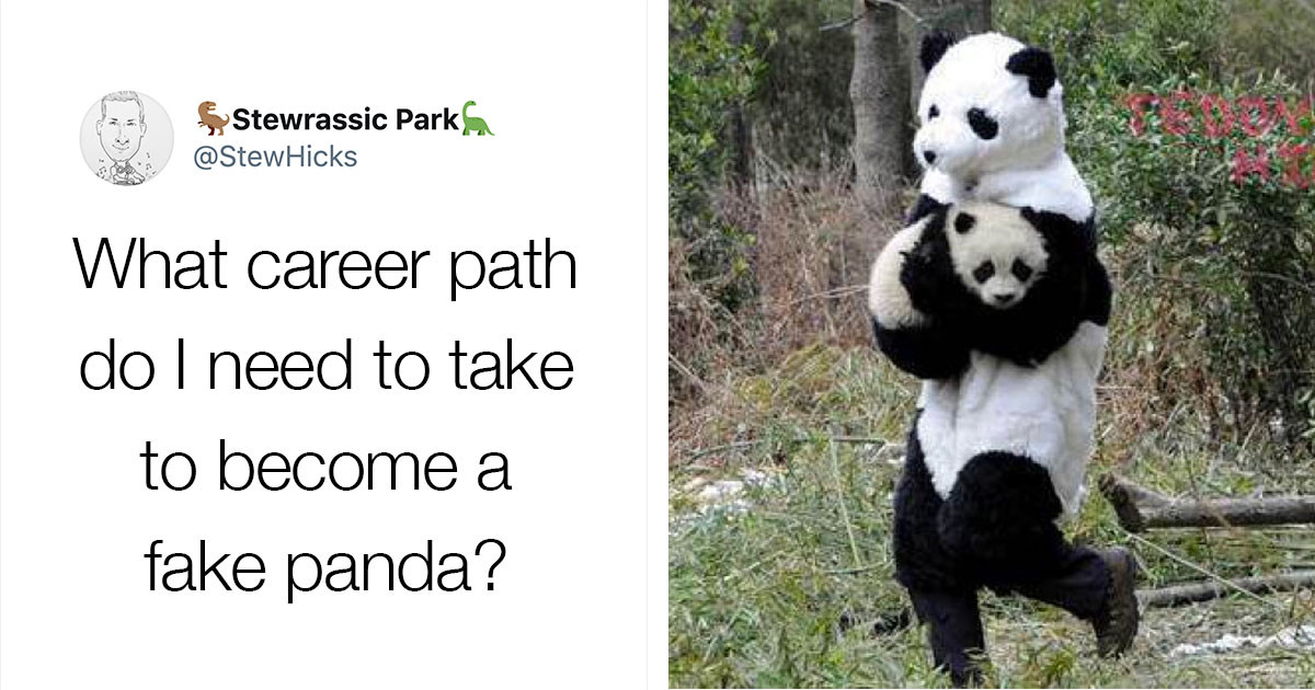 There's A Job That Involves Putting On A Panda Costume And Playing With Panda Cubs