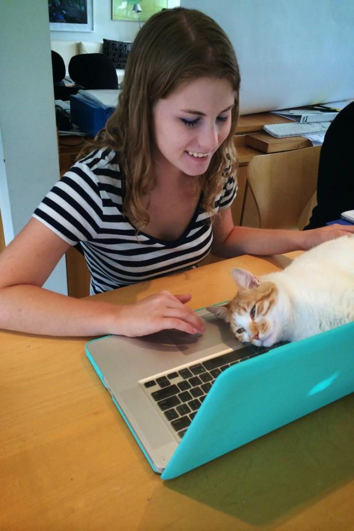 Wow, human, this is, like, the purr-fect place to sit!